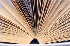 Lektorat für geisteswissenschaftliche Bücher