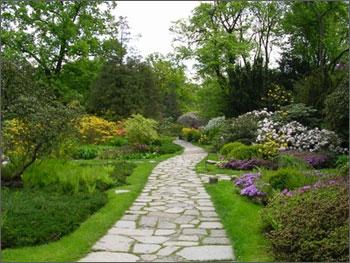 Pflanzen Im Garten | Barkhoff & Co. Gmbh, Essen – galaxyquest.info