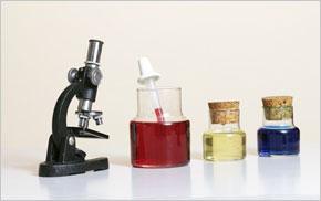 Naturwissenschaft lektorieren